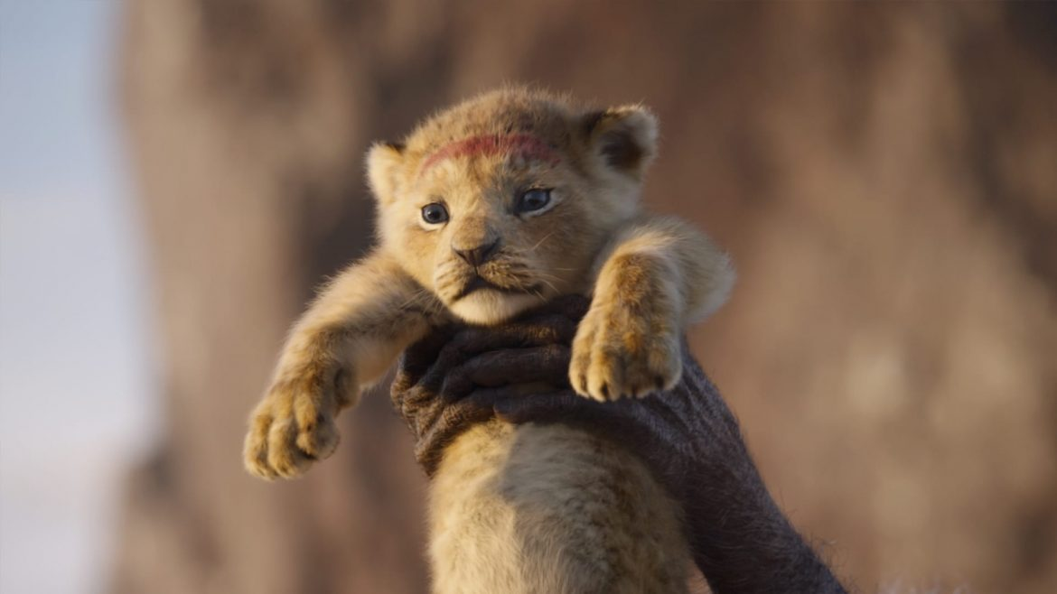 introduces individuality The Lion King